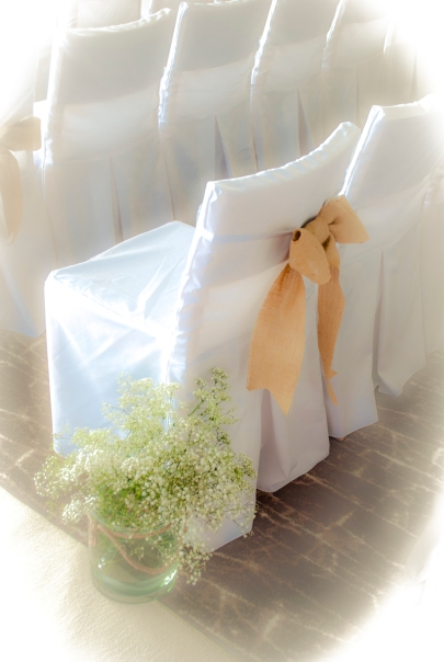 Chic Chair Cover and sash ©2014 Purple Sky Productions.