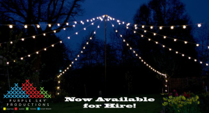 Festoon Lighting - Perfect for every event